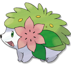 Pokemon - Shaymin
