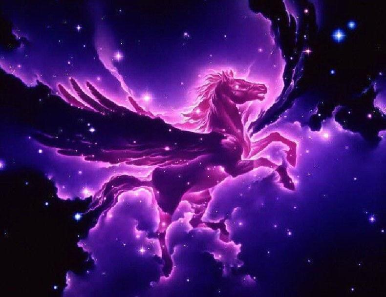 Pégase violet