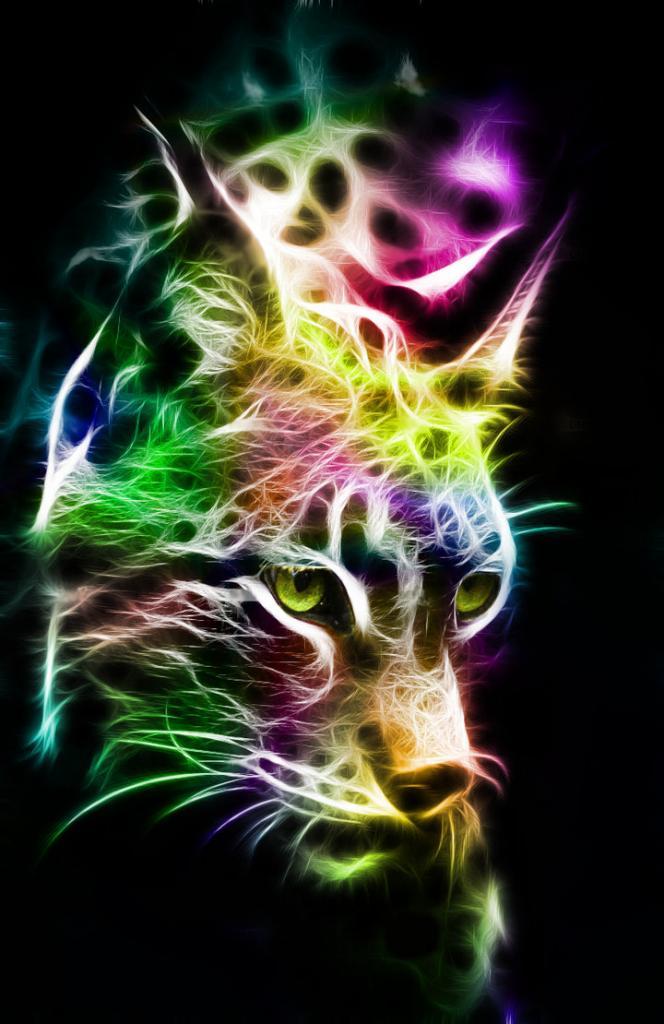 Lynx en couleurs