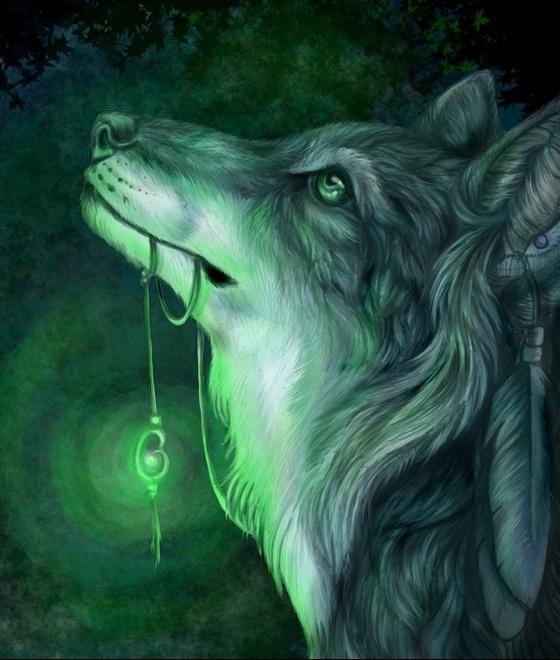 Un Loup 2