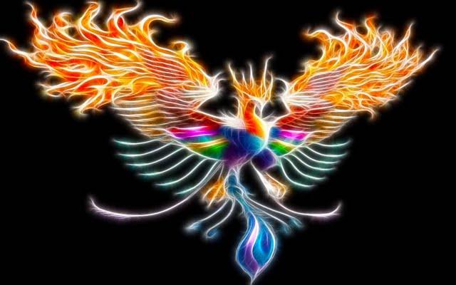 Phoenix en couleurs